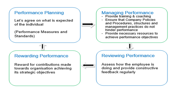 Top Line View of the Performance Management Process